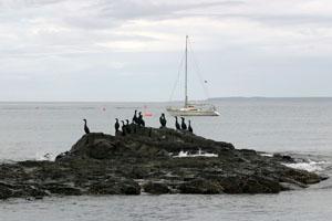 Яхта Александра на рейде